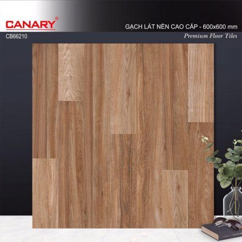 Canary KT 60x60 mã CB66210